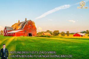 vstar farm